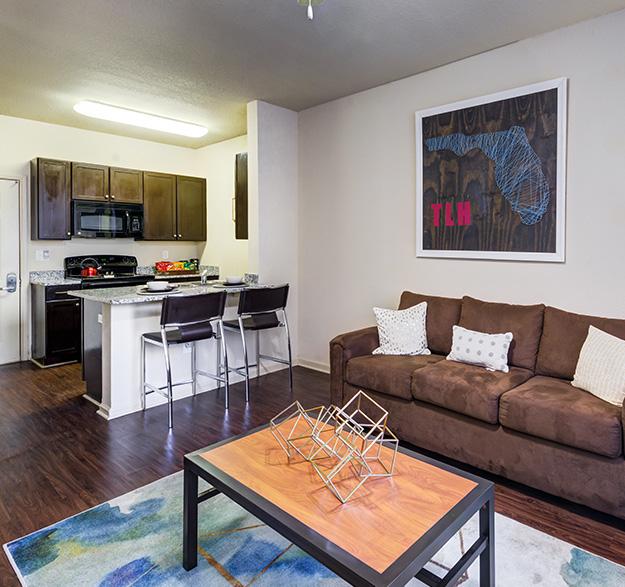 Move-In Ready FSU Apartments - Image 01